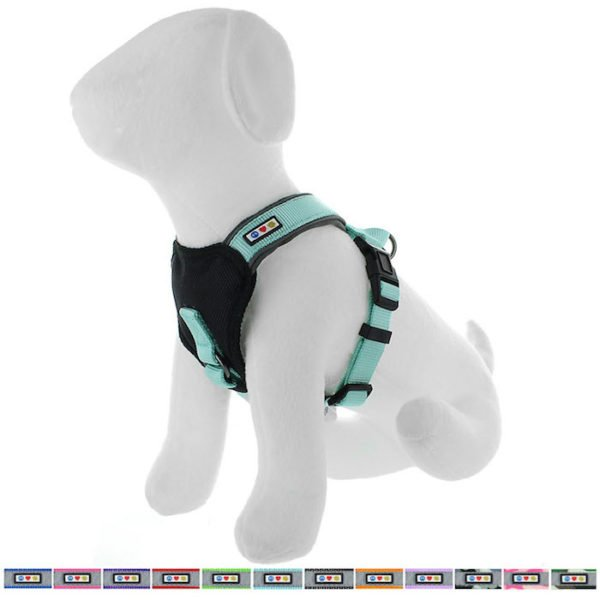 Pawtitas reflective padded dog harness65