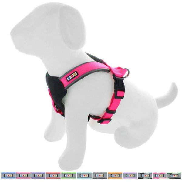 Pawtitas reflective padded dog harness68