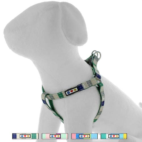 cool styling harness