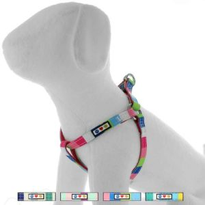Pawtitas multicolor harness2