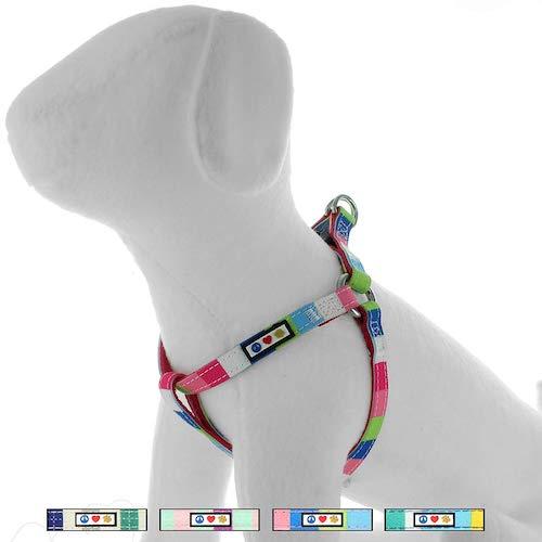 Pawtitas multicolor harness2