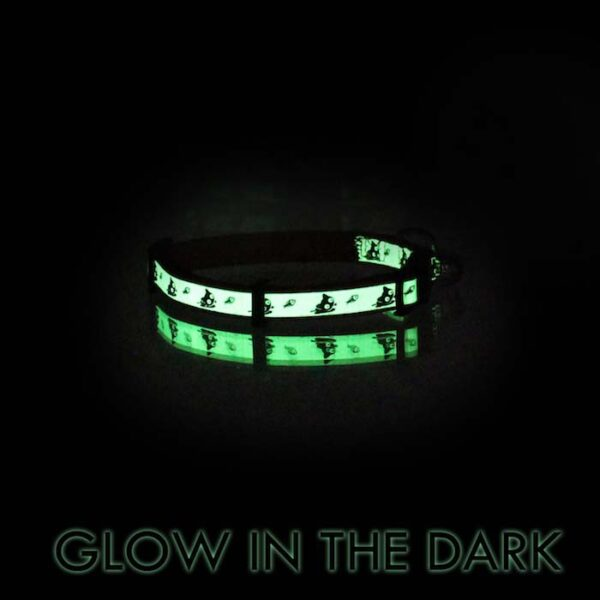 Glow in the dark cat collar