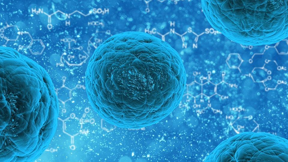 DIPG Treatment, Poliovirus
