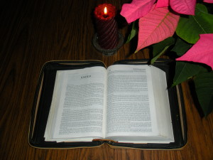 A Rose, Love and A Savior