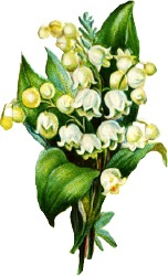 lily-of-the-valley-arrangement