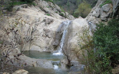 Santa Barbara's Favorite Waterfall and Hot Spring Hikes