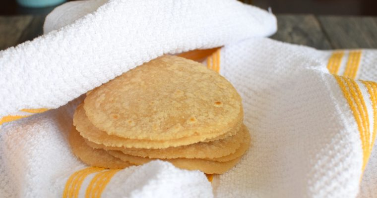 Paleo Tortillas for a Candida Diet