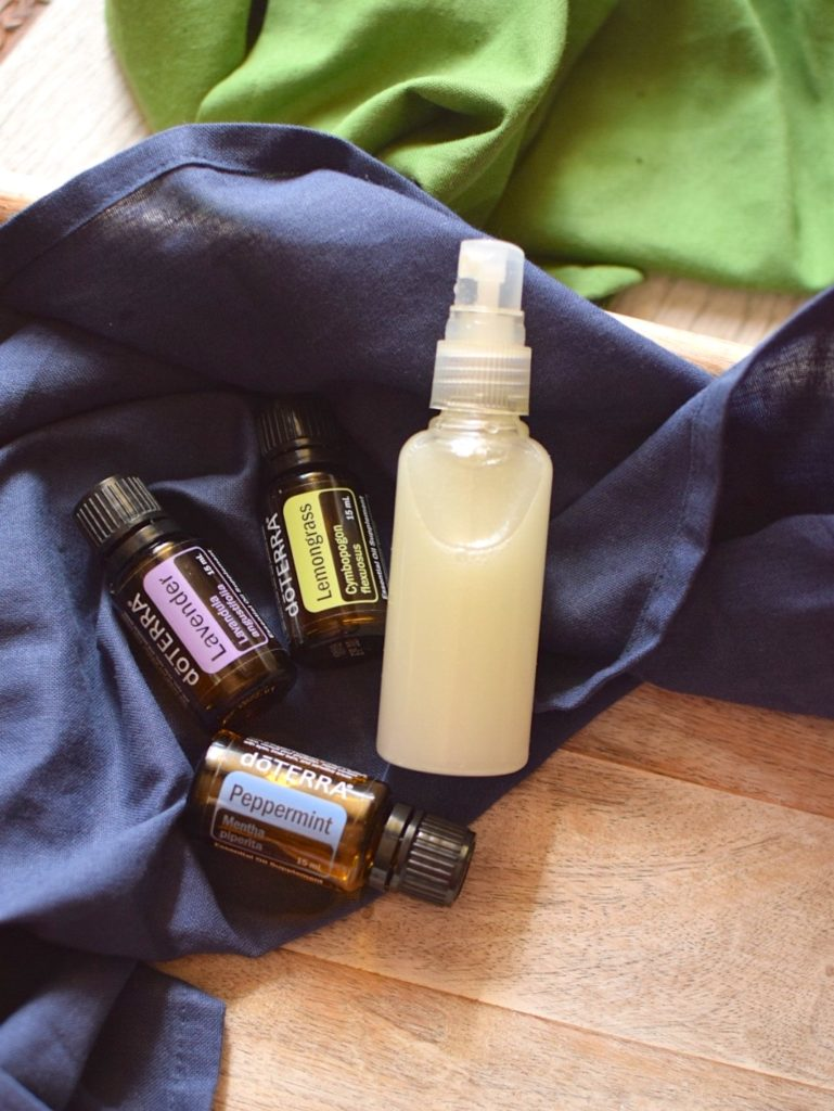 DIY Non Toxic Bug Spray
