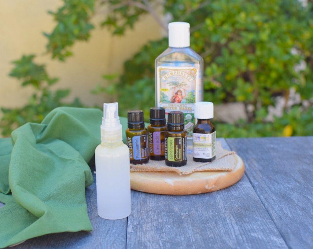 DIY non-toxic buy spray