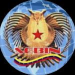 Seal_of_SEBIN