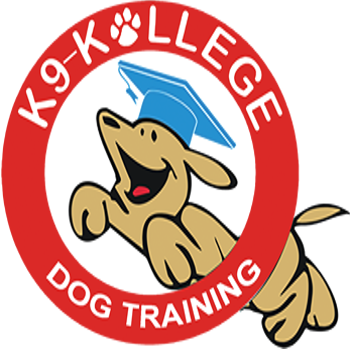 K-9 Kollege Dog Training