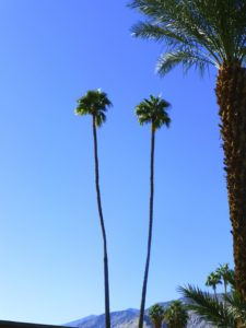 Twin Palms in Palm Springs