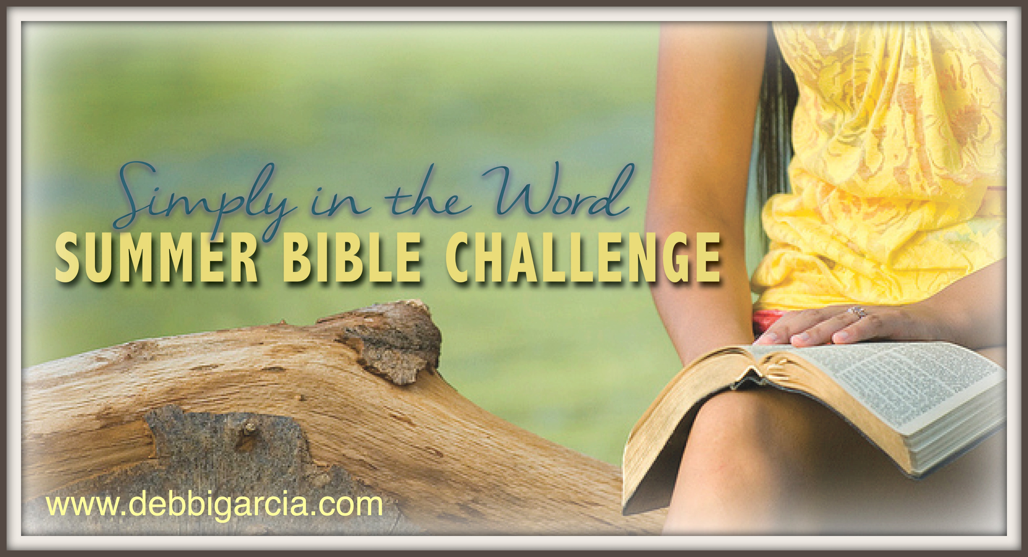 Simply Summer Bible Challenge