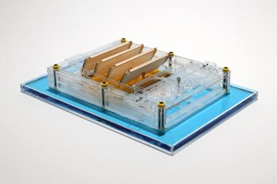 The evaporation engine floats on the surface of water. It creates piston-like back and forth motion as the water evaporates from the surface. The movement of the engine produces electricity when connected to a generator (Photo by Xi Chen, Columbia University)