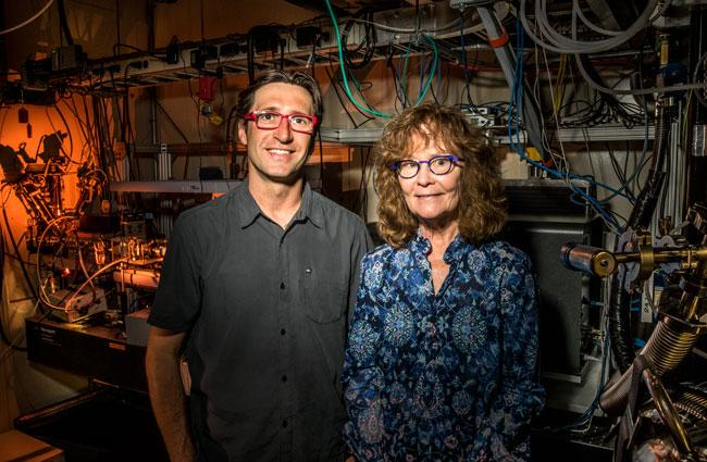 Pathogenic Triggers of Bacterial DNA Discovered