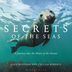 Book Review: Secrets of the Seas: A Journey into the Heart of the Oceans
