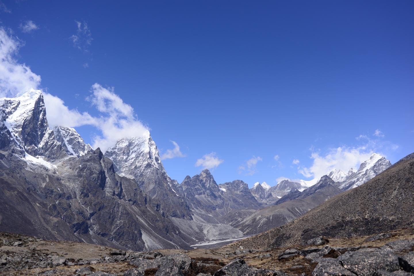 View towards Khumbu and Cholatse from below Ama Dablam at about 4,900 m showing typical subnival vegetation in the foreground. Photo credit: Karen Anderson