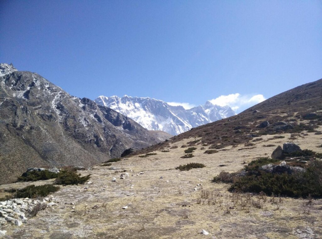 Himalayas: View towards Nuptse-Lhotse Ridge from below Ama Dablam at about 4,900 m showing typical subnival vegetation.
