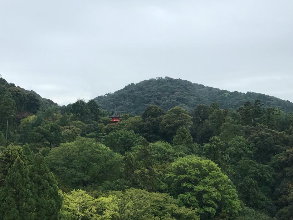 🇯🇵2nd time visit Japan 二度到日本已是幾十年後的國中同學婚禮2