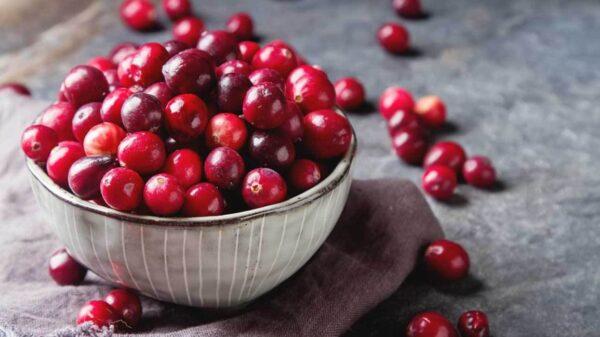 The Cure for UTIs? still Cranberry Juices? 泌尿道反覆感染,還在喝蔓越莓?