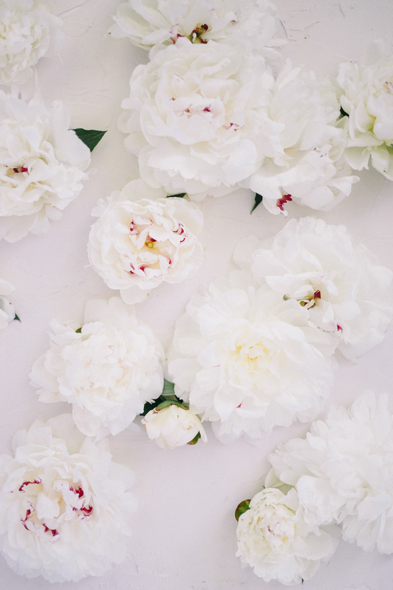 Peonies | All White Wedding Bouquet Preservation