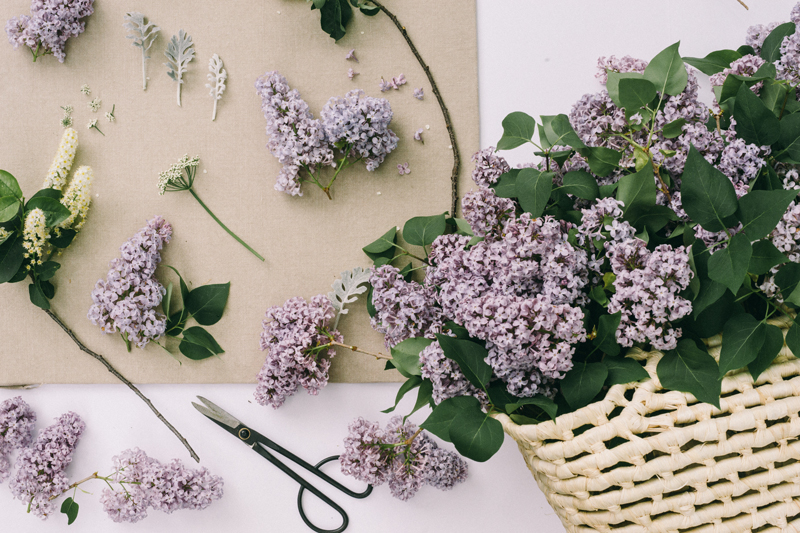 Lilac Wedding Bouquet | Flat-lay With Just One Type of Flower
