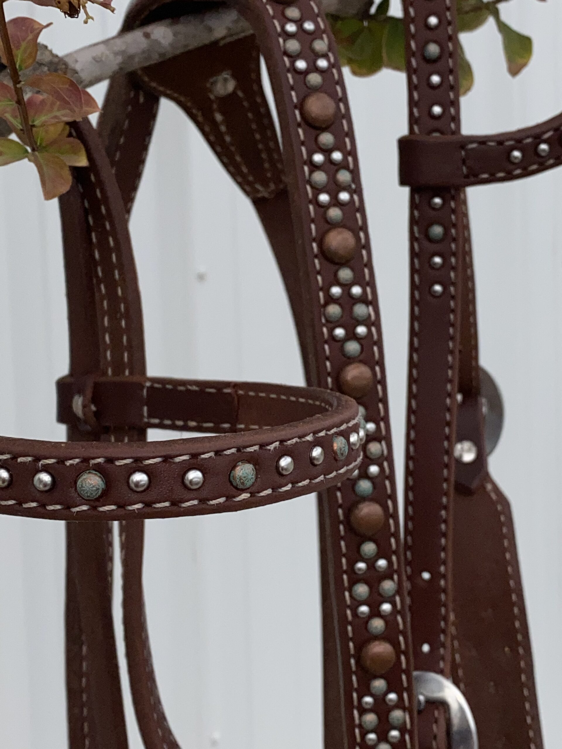 OILED HARNESS LEATHER Diamond details tack treasure of the day