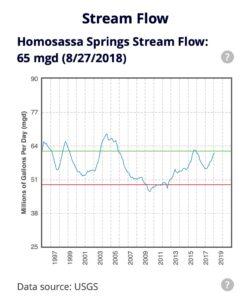 Homosassa Stream Flow spring