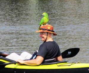 man with parrot Homosassa River Restoration