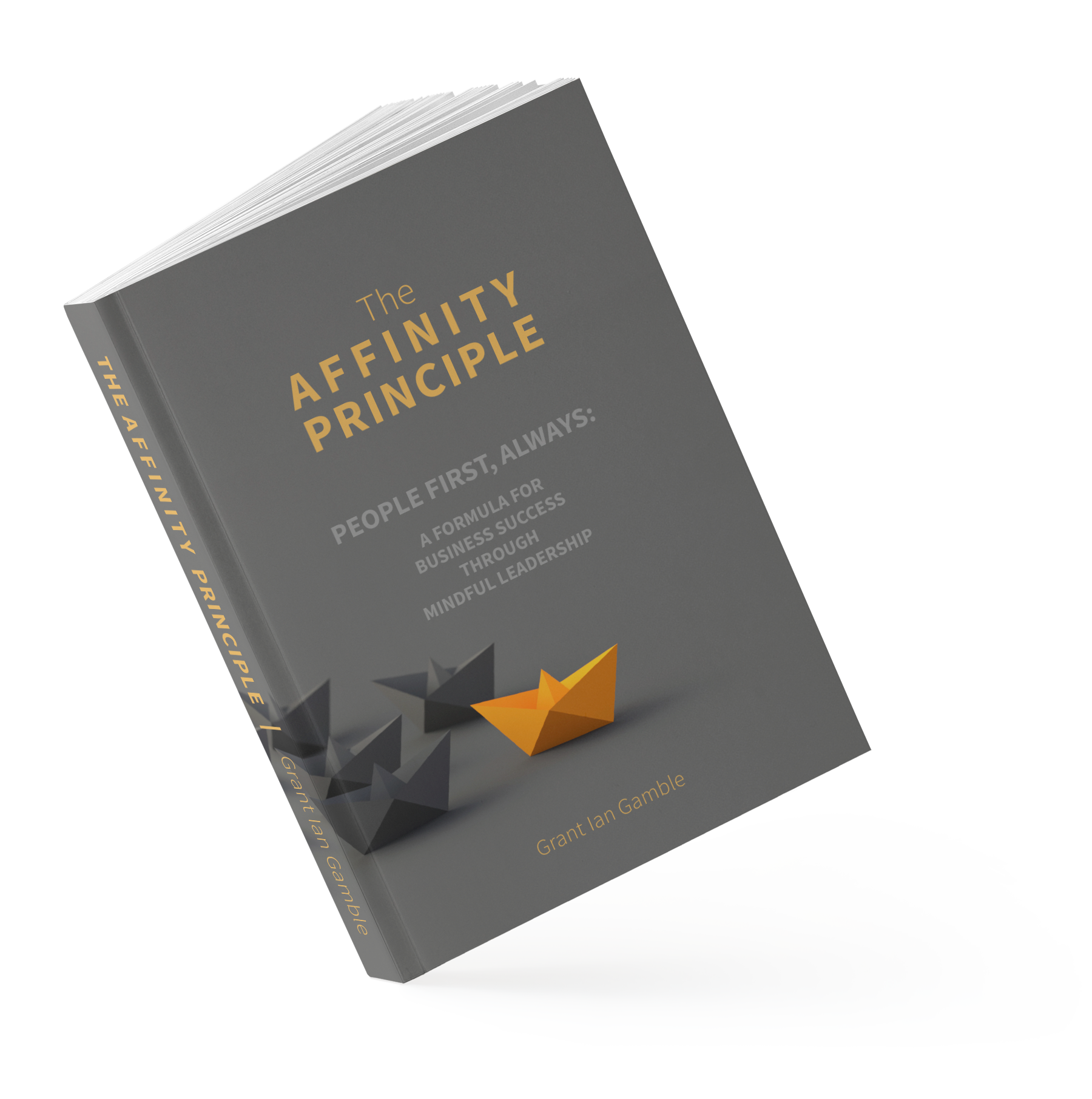 The Affinity Principle | Business Mindful Leadership | Grant Ian Gamble