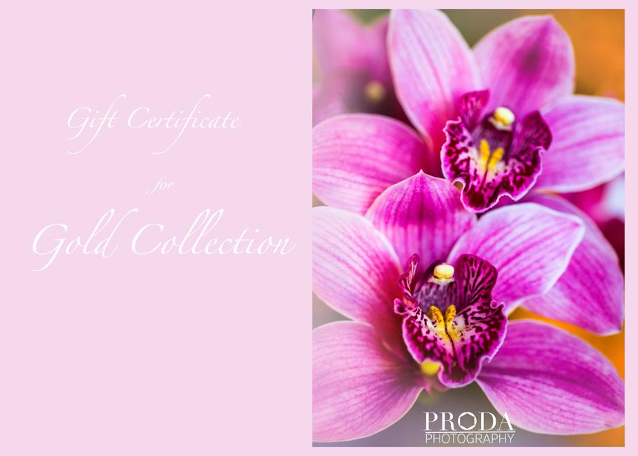 proda-gift-certificate-gold