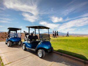 Consumer Golf Cart - Photo 1
