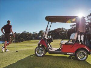 Consumer Golf Cart - Photo 5