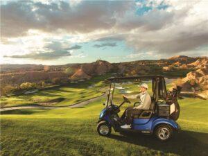 Consumer Golf Cart - Photo 4