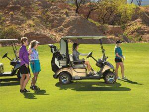 Consumer Golf Cart - Photo 3