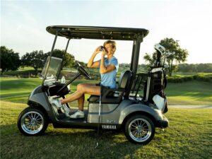 Consumer Golf Cart - Photo 2