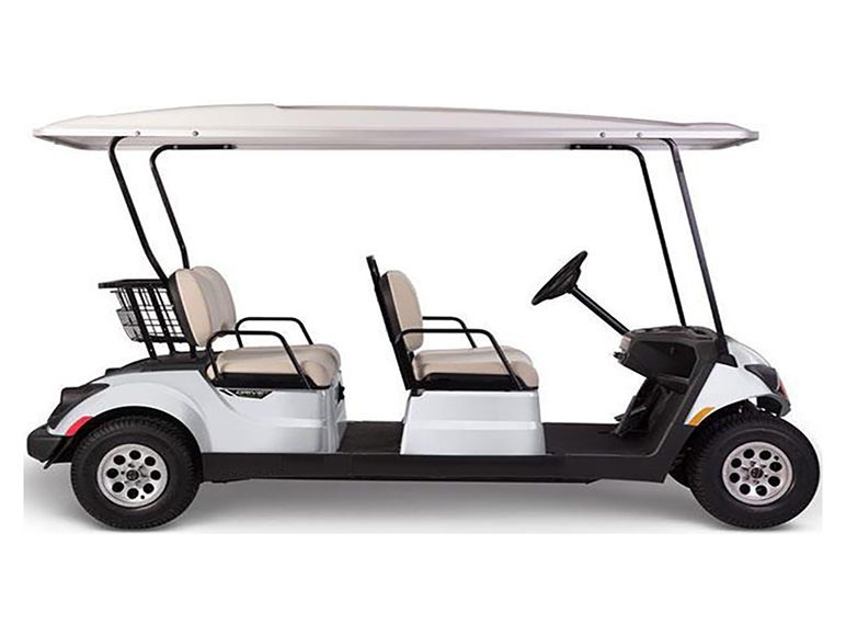 Neighborhood Golf Cart Concierge4