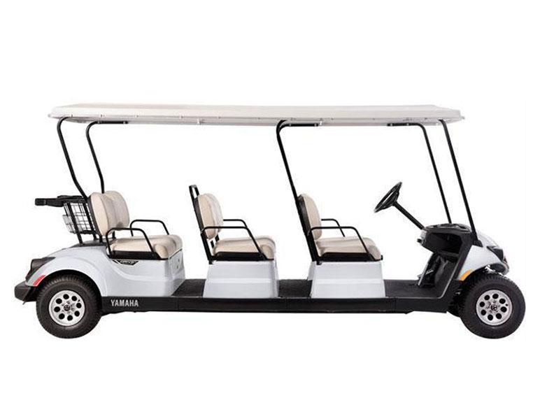 Neighborhood Golf Cart Concierge6