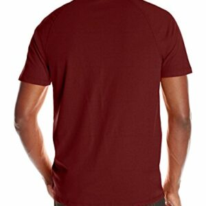 Carhartt Men's Force Cotton Delmont Short Sleeve T-Shirt (Regular and Big & Tall Sizes), red/brown heather, Large