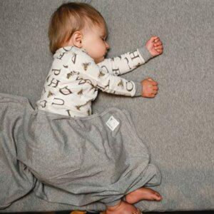 Burt's Bees Baby Baby Pajamas, 2-Piece PJ Set, 100% Organic Cotton (12 Mo-7 Yrs), Eggshell A-Bee-C, 3T