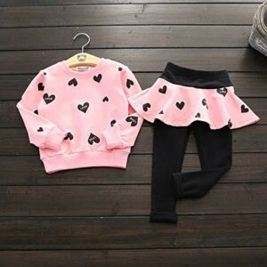 Little Girl Clothes Infant Outfits Set 2 Pieces Long Sleeved Tops and Pants (Pink, 3-4 T)