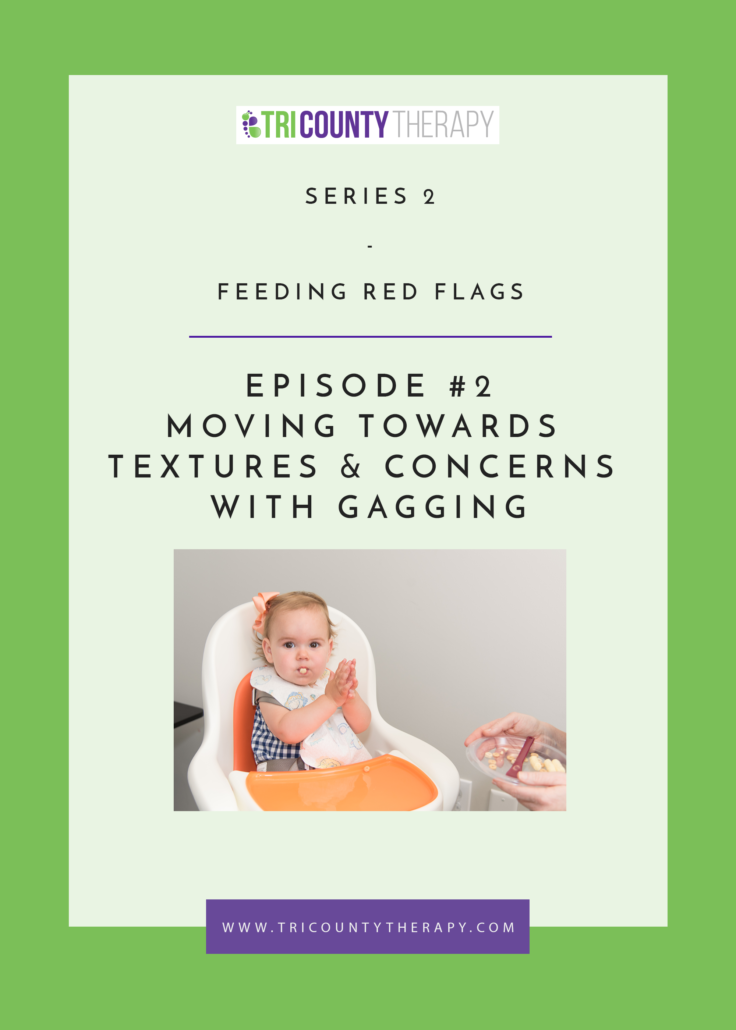 Feeding Red Flags: Moving Towards Textures & Concerns With Gagging