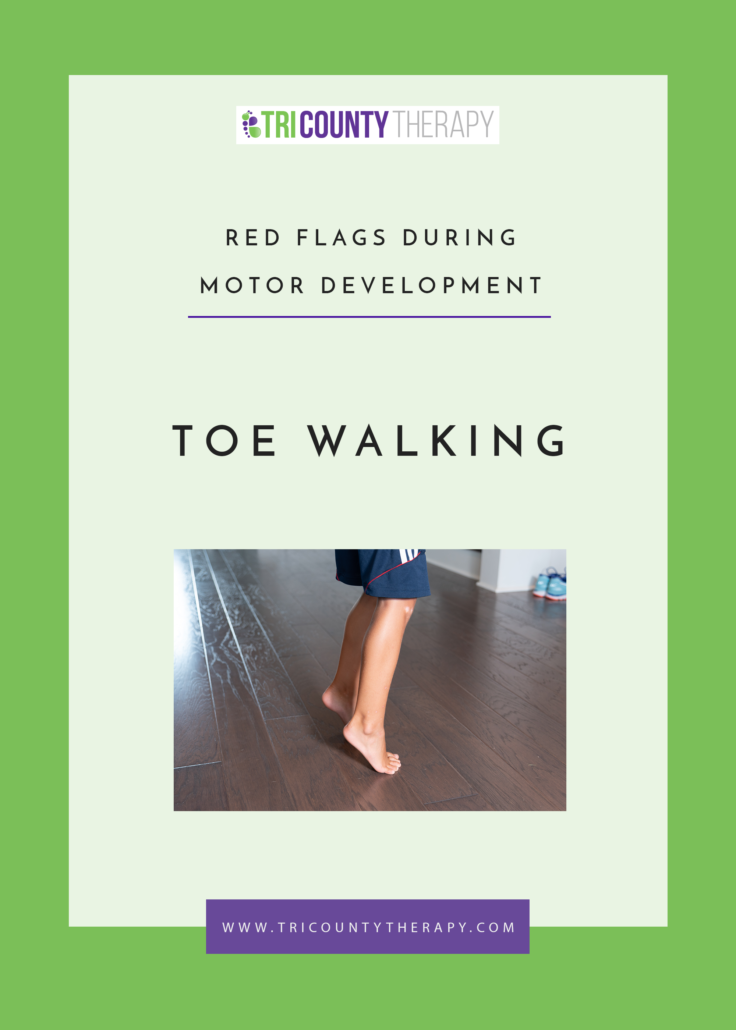 Red Flags During Motor Development: Toe Walking