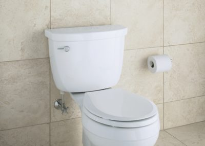 ADA approved Comfort Height Toilet tiled bathroom