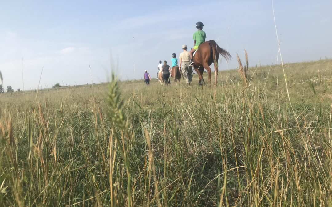An adaptive riding class participates in a trail ride