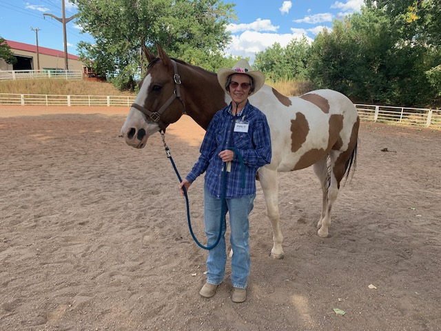 Equine Assisted Mental Health, Collaboration Through Multiple Perspectives
