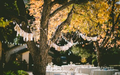 Outdoor Wedding Lighting Ideas: How To Light An Outdoor Wedding