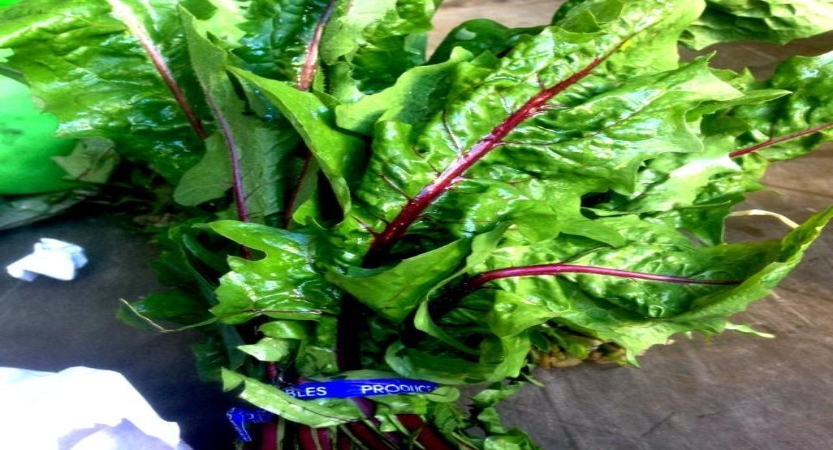 lettuce, nutrition and recovery, health and recovery