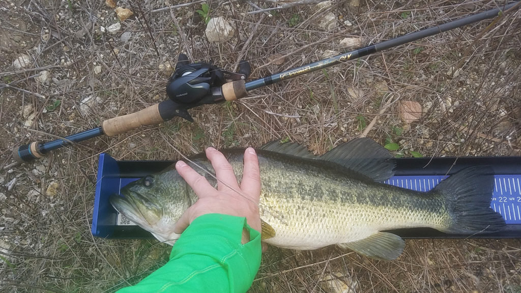 Ketch Products Bass Board Review Payne Outdoors