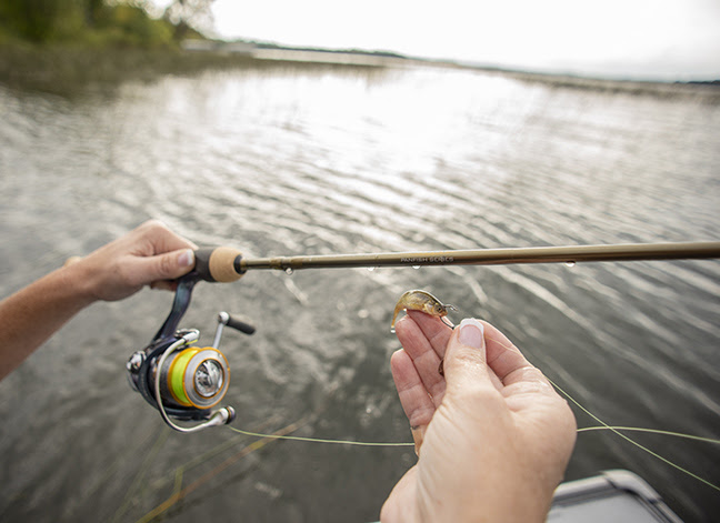 find and catch fall crappie